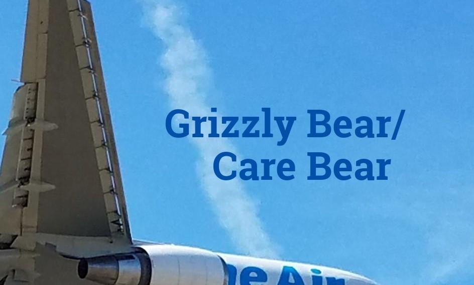 Grizzly Bear/Care Bear
